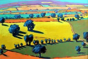 Cotswold Way by Paul Powis