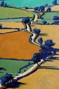 Country Lane by Paul Powis
