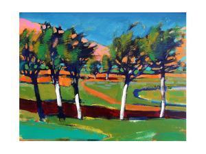 Evergreen by Paul Powis