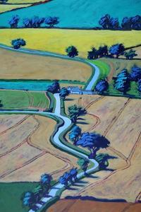 Lane in summer close up 1 by Paul Powis