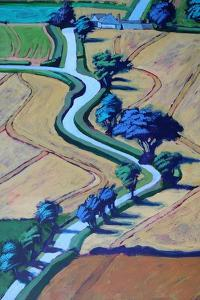 Lane in summer close up 2 by Paul Powis