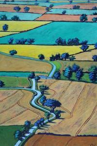 Lane in summer by Paul Powis