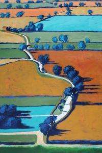 Lane towards Ledbury by Paul Powis