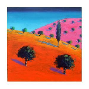 Pink Hill by Paul Powis