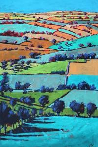 Rodge Hill by Paul Powis