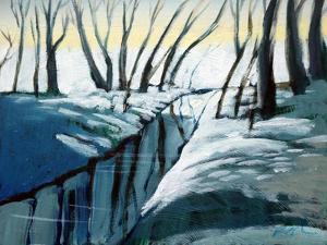 snow woodland by Paul Powis