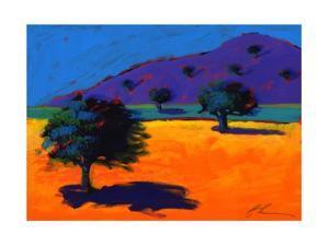 Summertime, 2008 by Paul Powis