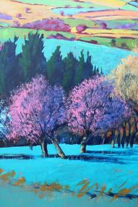 Teme Valley April close up by Paul Powis