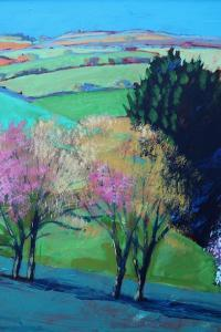 Teme Valley blossom close up 2 by Paul Powis