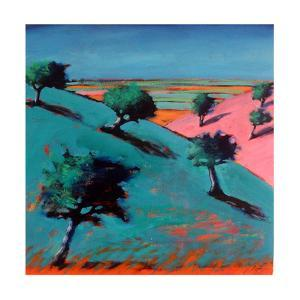 Valley by Paul Powis