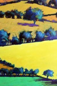 Whiteleaved oak close up 3 by Paul Powis