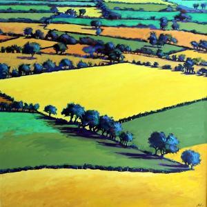 Whiteleaved oak by Paul Powis