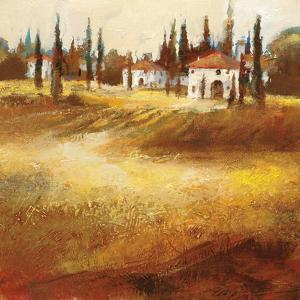 Tuscan Hills by Paul Santiago
