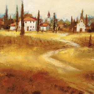 Tuscan Path by Paul Santiago