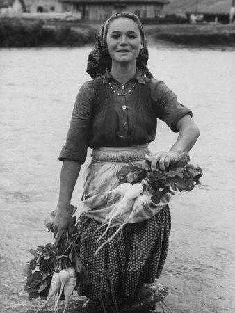 Girl Farm Worker Washing Turnips from River, on Collective Farm