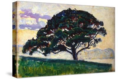 Large Pine, Saint-Tropez, 1892-1893