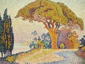Pine Trees at Bertaud, Saint- Tropez by Paul Signac