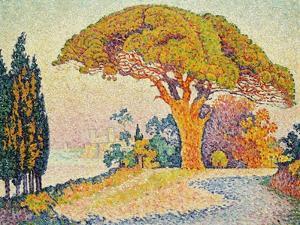 Pinie bei Bertraud, Saint-Tropez (Provence). Le Pin de Bertaud, Saint-Tropez (Provence) by Paul Signac