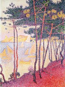 Sailing Boats and Pine Trees, 1896 by Paul Signac