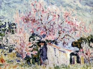 Spring in Provence, 1903 by Paul Signac
