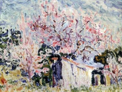 Spring in Provence, 1903