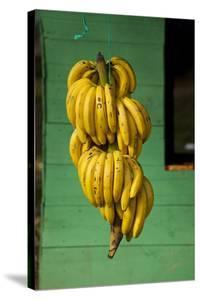 Bananas at a Fruit Stand in Dominican Republic by Paul Souders