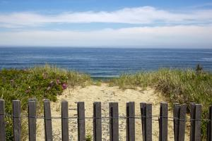 Fence and Sand Dunes on Coast by Paul Souders