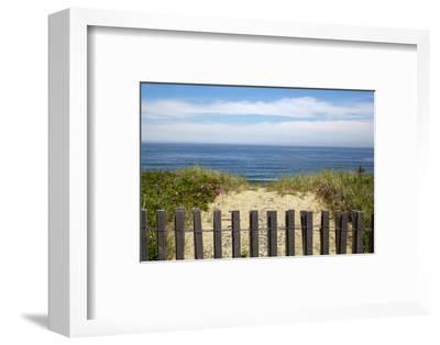Fence and Sand Dunes on Coast