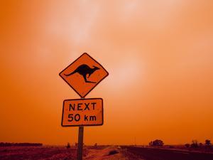 Kangaroo Crossing Road Sign, Outback Dust Storm, Rural Highway, Ivanhoe, New South Wales, Australia by Paul Souders
