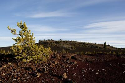 Volcanic Lava Fields, Craters of the Moon National Monument, Idaho by Paul Souders