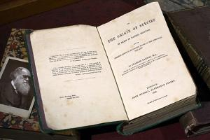 1859 First Edition Origin of Species by Paul Stewart