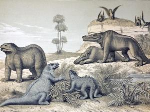 1862 Dinosaurs And Pterosaurs. by Paul Stewart