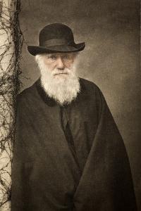 1881 Tinted Charles Darwin Portrait by Paul Stewart