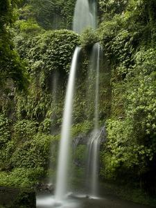 A Waterfall in Mount Rinjani National Park by Paul Sutherland