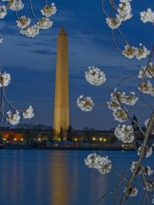 Washington Monument with Cherry Trees in Bloom at the Tidal Basin by Paul Sutherland