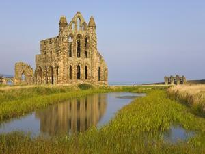 Ruins of Whitby Abbey in North Yorkshire by Paul Thompson