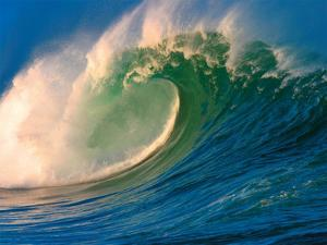 Morning Light Hawaii - Tube Barrel - Breaking Wave by Paul Topp