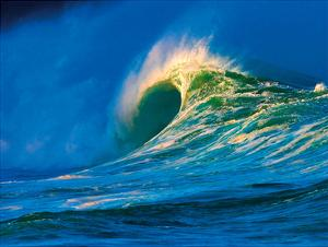 Waimea, Hawaii - Shorebreak Wave by Paul Topp