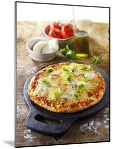 Tomato and Mozzarella Pizza with Basil by Paul Williams