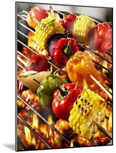 Vegetable Kebabs on Barbecue by Paul Williams