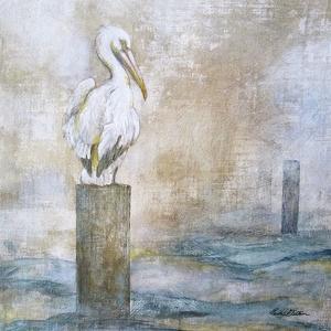 Coastal Birds I by Paula Giltner