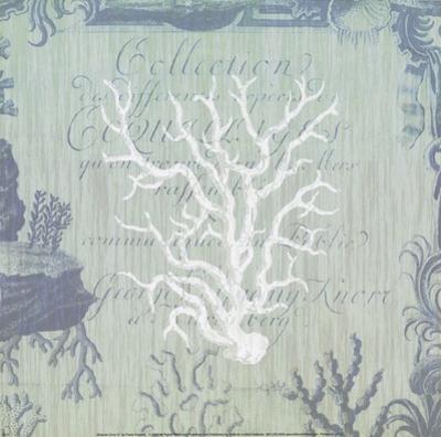 Seaside Coral IV