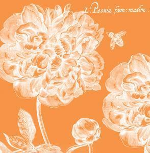 Summer Bees III by Paula Scaletta