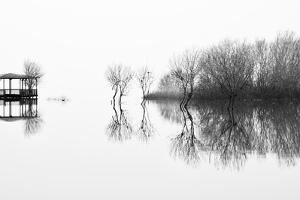 Changes by Paulo Abrantes