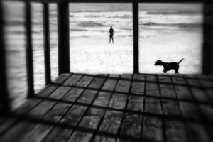 Left Behind by Paulo Abrantes