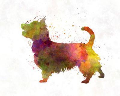 Australian Terrier in Watercolor by paulrommer