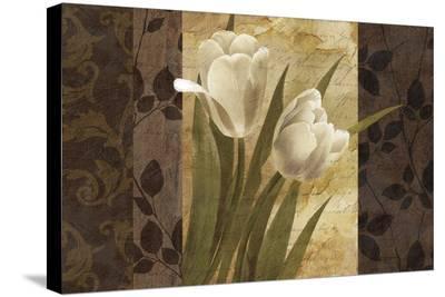 Pavane-Keith Mallett-Stretched Canvas Print