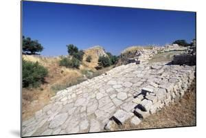 Paved Entrance to Propylaea, Troy II, Troy