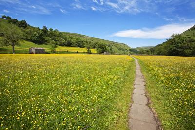 Paved Footpath across Buttercup Meadows at Muker-Mark Sunderland-Photographic Print