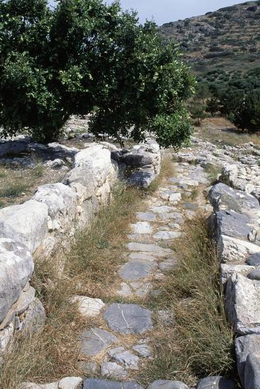 Paved Street Near Gournia Palace, Crete, Greece--Giclee Print